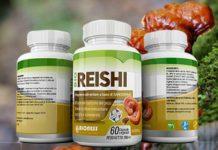 Integratore alimentare Fungo Bio Reishi