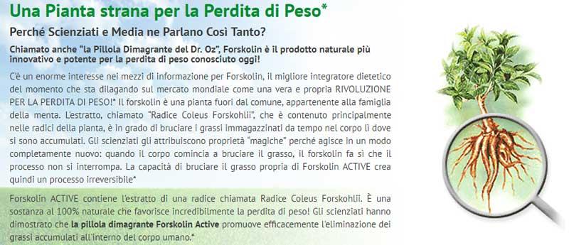 Forskolin Active ingredienti