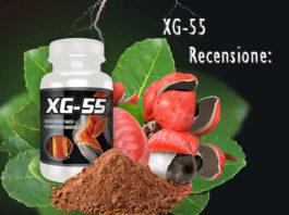 Recensione XG55