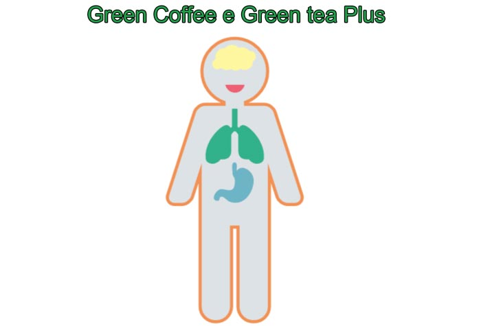 Perche acquistare Green Coffee e Green tea Plus